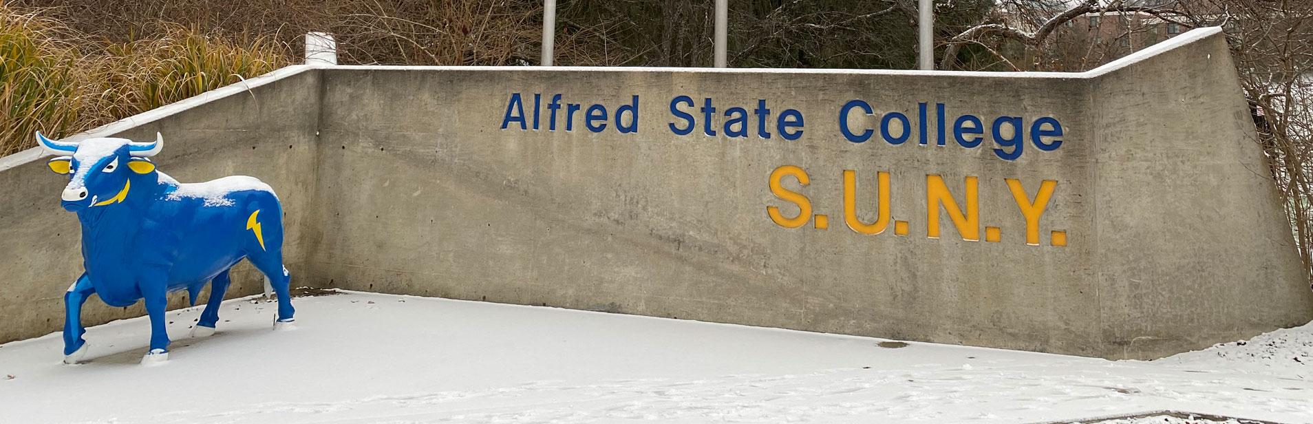 Alfred Student Storage | Alfred State College